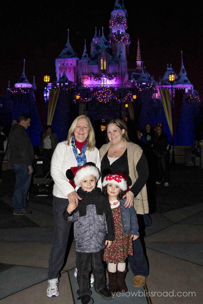 Family Disneyland Xmas Castle