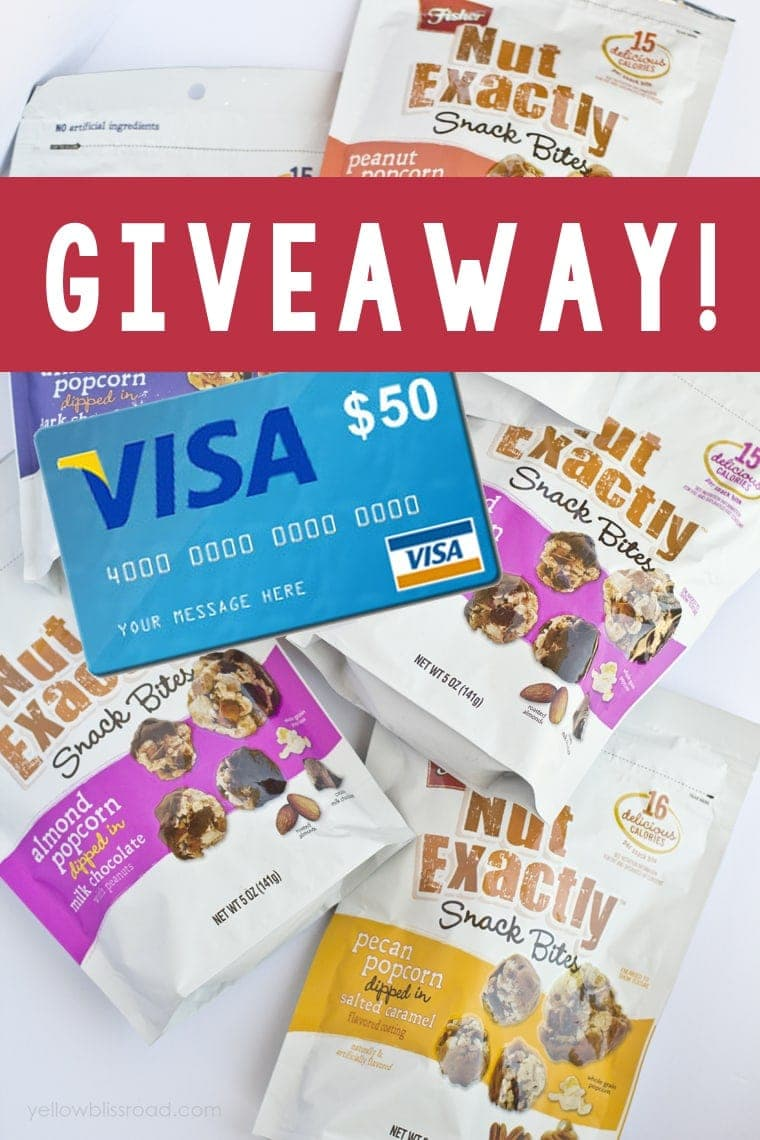 Visa Gift Card and Fish Popcorn Snack Giveaway!