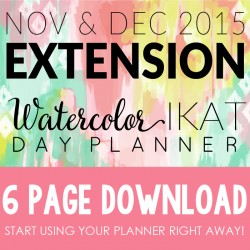 2015 Extension Pink and Chic Blog Planner2
