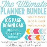 2015 Blog Planner, Daily Planner and Menu Planner
