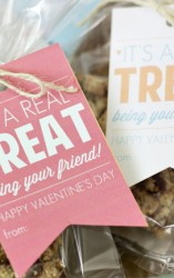 Free Printable Valentine's Treat Tags